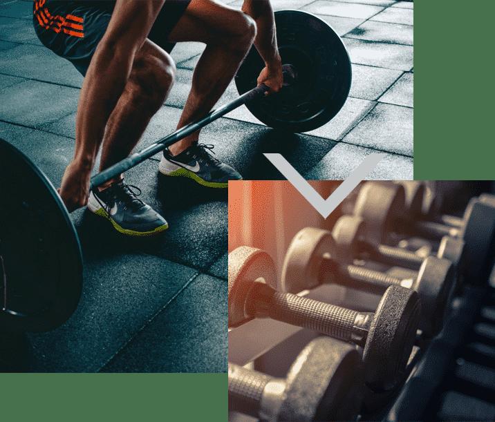 gym équipements musculation